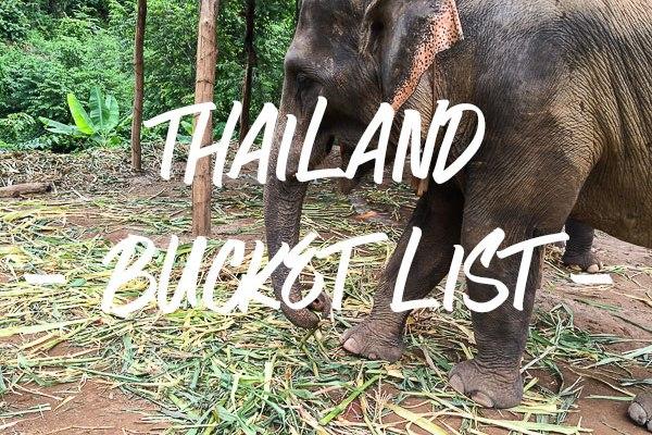 Elephant-Sanctuary, Chiang Mai