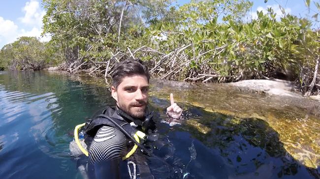 Diving with Crocodile in Cenote